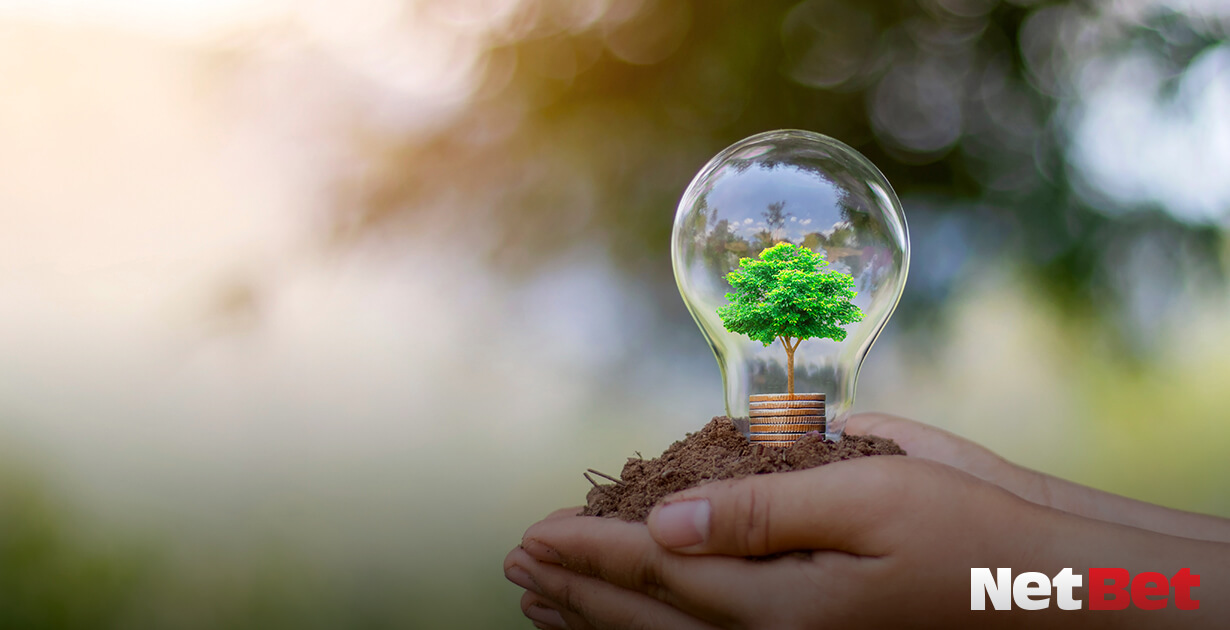 aziende green, il futuro dell'economia